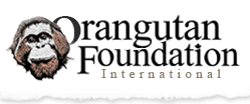 Orangutan Foundation Internacional