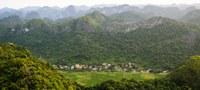 Naciones Unidas dice: Mitigar la crisis climática y evitar la inseguridad alimentaria requiere que el mundo restaure mil millones de hectáreas de tierras degradadas