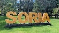 Soria conmemora el Día del Medio Ambiente avanzado para conseguir la neutralidad de emisiones en el 2030