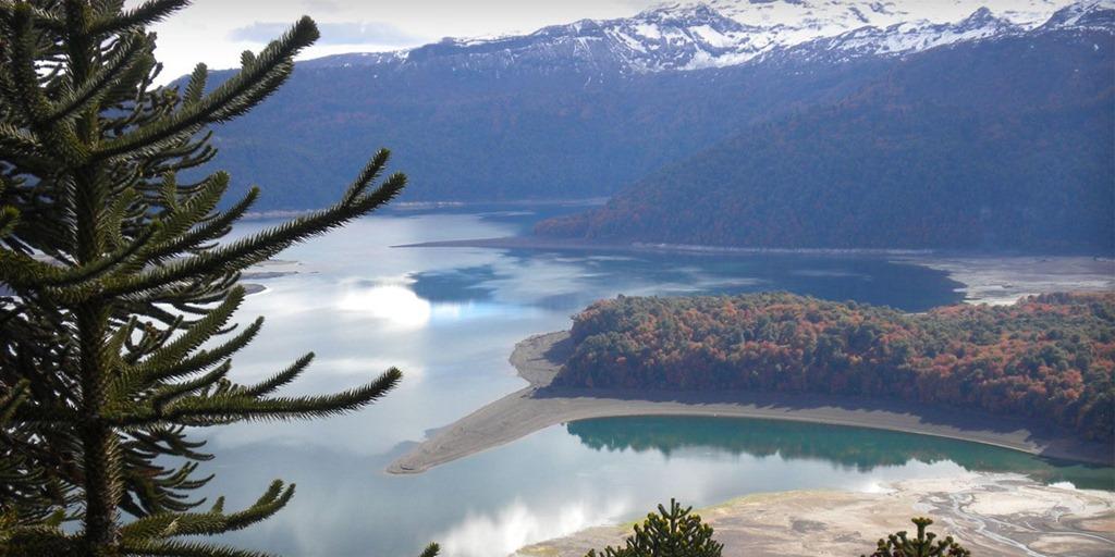 Universidad Autónoma de Chile se integra a comité internacional del Corredor Biológico Mundial